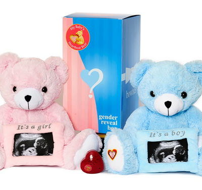 Gender Reveal Bears