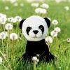 Panda Bear recordable stuffed animal kit - Panda Bear 2 100x100