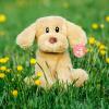 Puppy recordable stuffed animal kit - Puppy 2 100x100