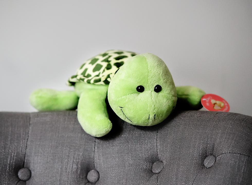 Turtle Recordable Stuffed Animal My Little Bo Peep