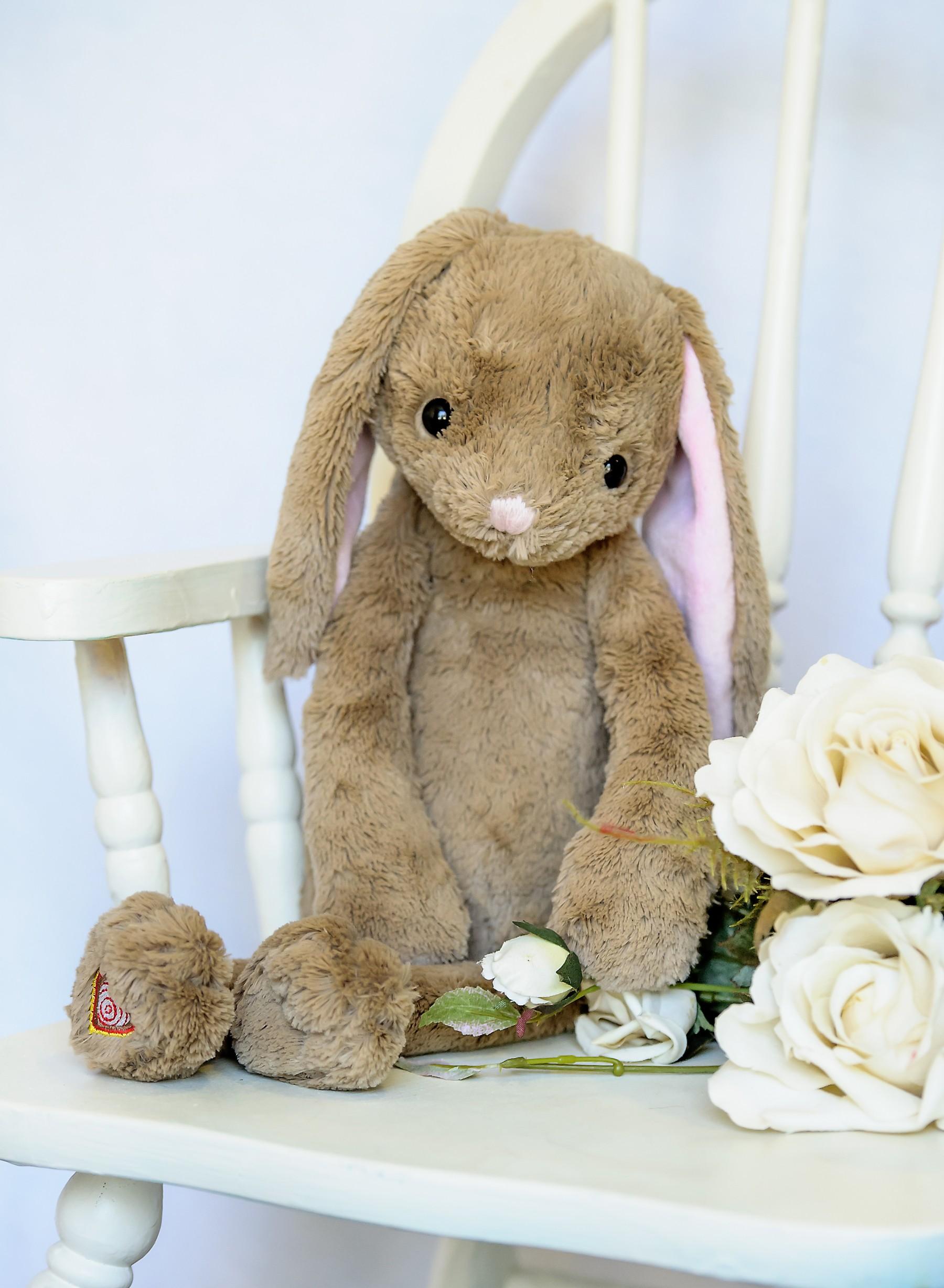 Bunny Recordable Stuffed Animal Kit